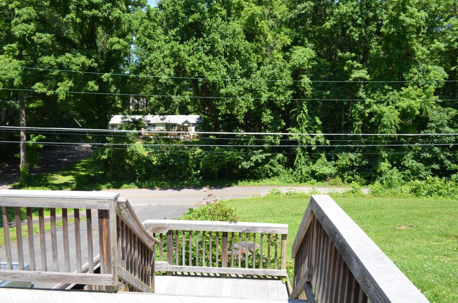 View of Woodland Drive from the front door.
