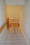 Basement stairway in Hampton Oaks Subdivision 11 Arbor Lane Stafford, VA. 22554